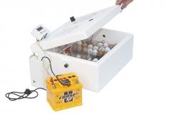 Инкубатор для яиц Br-Box 50
