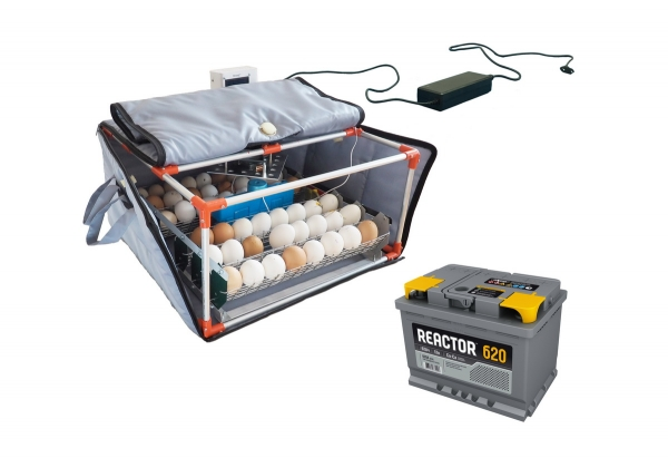 Egg incubator Broody Micro Battery - Incubator with battery, incubator with backup power