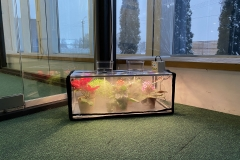 greencap_plant_grow_lights_006_indoor