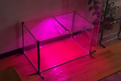 Mini-greenhouse for the apartment, mini greenhouse for the house