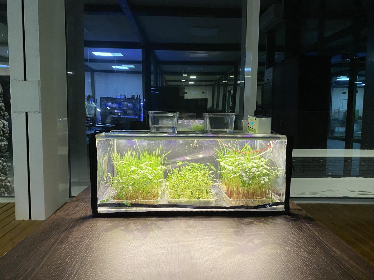 greencap_plant_grow_lights_007_indoor