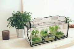 greencap_plant_grow_lights_001_indoor