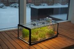 led lights for plants