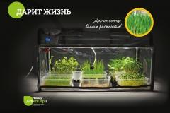 Plant propagator with light