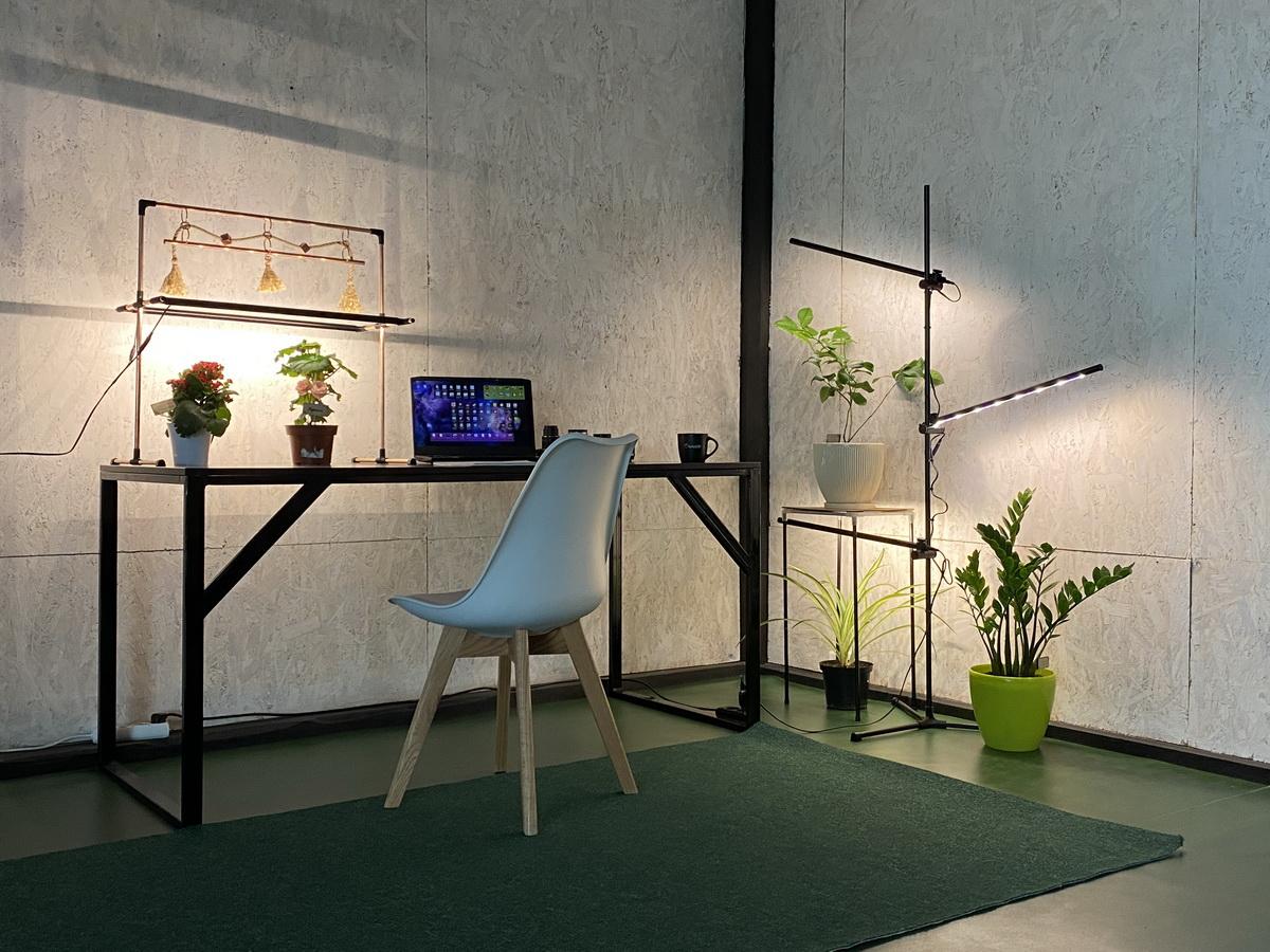 Grow light plants Floor lamp for decor
