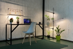 Grow light plants Floor lamp for decor