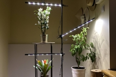 led_lamp_for_grow_plants