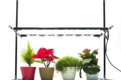 Plant lighting system