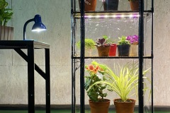 Indoor greenhouse kit with grow light