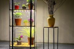 Indoor_greenhouse_Sezam-XL-Bamboo