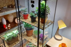 Mini_greenhouse built-in T5 grow-lights_Sezam-XL-Bamboo