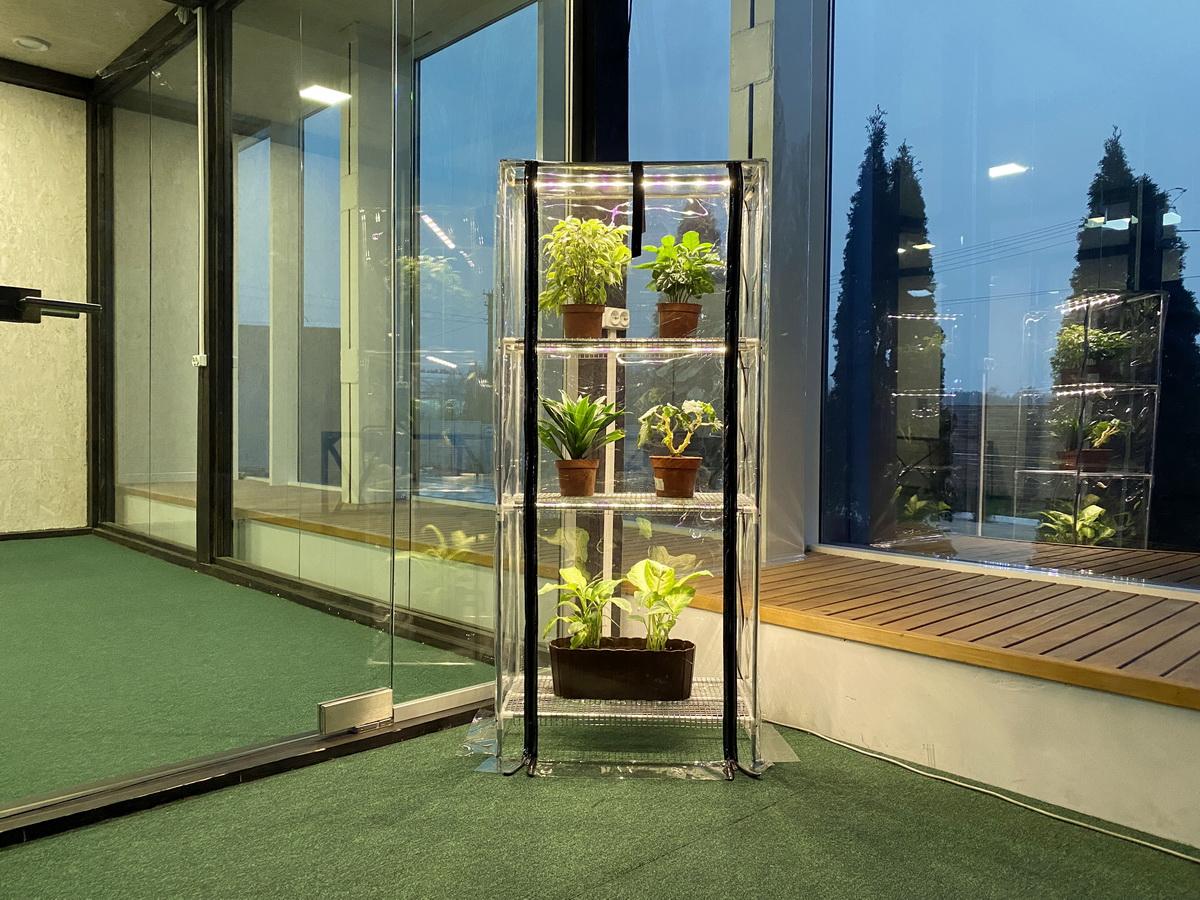 indoor greenhouse with lights