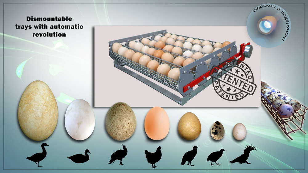 Removable automatic egg tray with cassettes