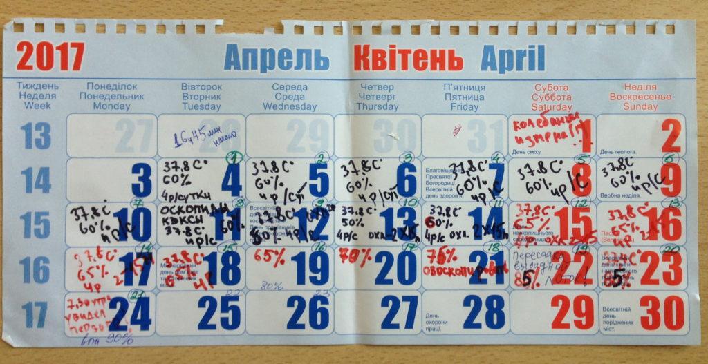 Календар інкубації курчат