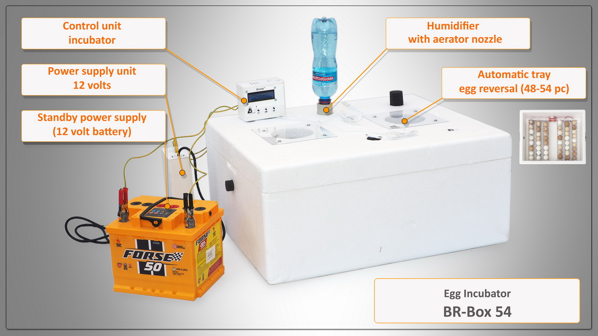 Br-Box 54 Br-Box 54 - the new Br-Box series (54 eggs) incubator, characterized by a traditional foam plastic body and a lamp unit for heating.