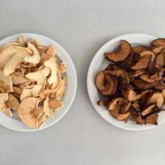 Як сушити яблука в дегідраторі