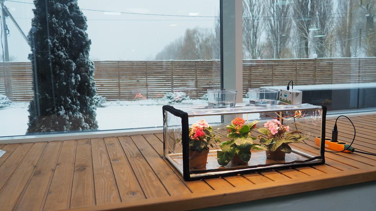 Germinador de microgreens GreenCap L - Sistema climático para plantas de interior