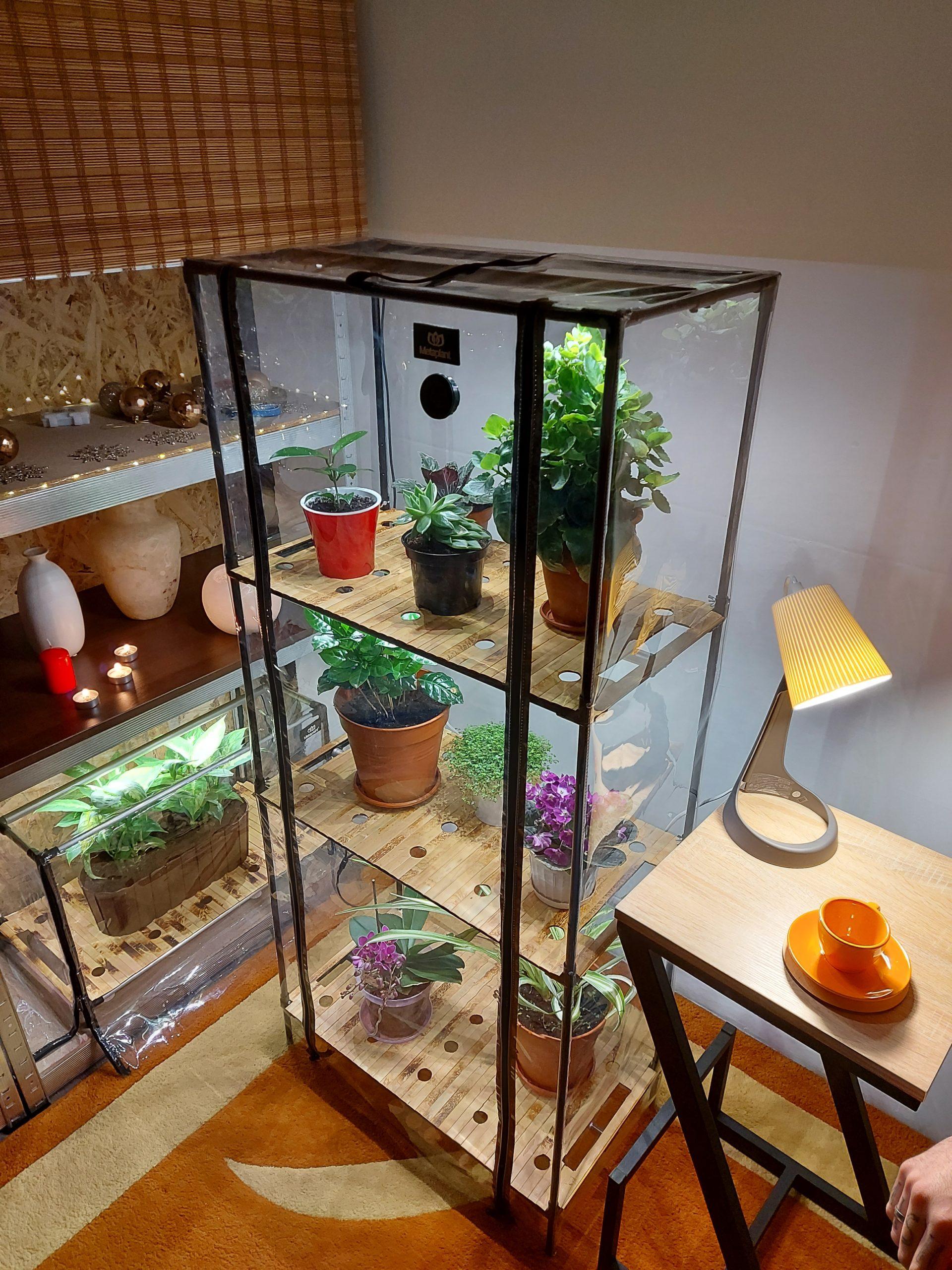 Greenhouse_cabinet _ndoor_Sezam-XL-Bamboo